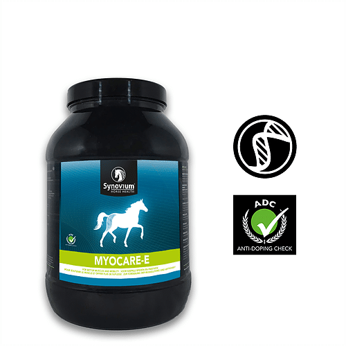 The benefits of Vitamin E supplementation in horses - Synovium Horse Health