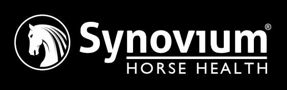 Synovium Horse Health