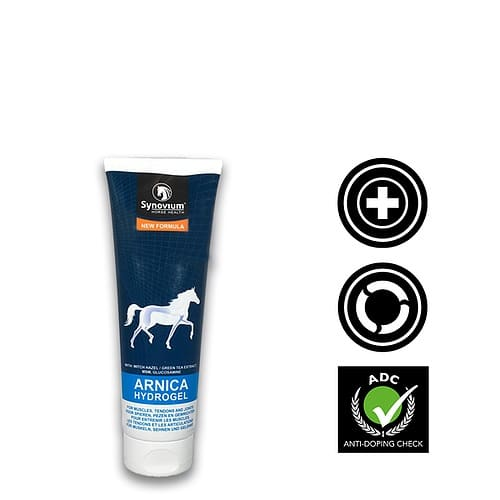 Great Benefits of Arnica for Horses and its uses - Synovium Horse Health